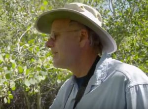 Dr. Bill Ripple shows how aspen have grown back thick and beautiful on Hart Mountain, now that cattle are gone