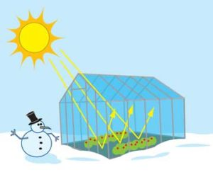 This image from NASA Climate Kids shows how the sun warms a greenhouse even in the middle of winter