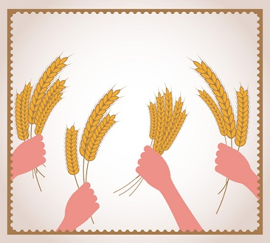 Whole grains have been prized as food for at least thousands of years. Their wild seed ancestors were undoubtedly eaten as well
